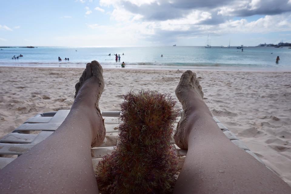 Unplug at the beach
